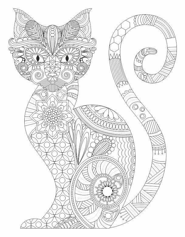 Раскраски с животными кошки