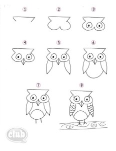Doodling owl