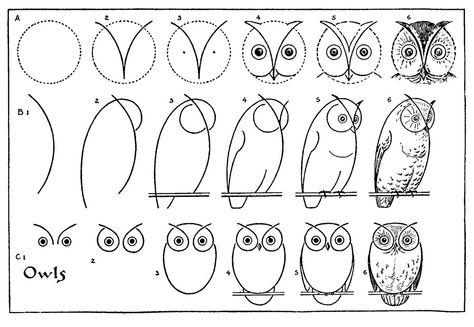 Схема как нарисовать сову