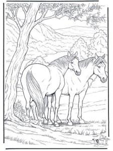 Раскраски антистресс животные лошадь