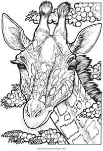 Раскраски антистресс животные жираф