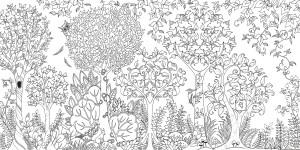 Зачарованный лес. Джоанна Бэсфорд