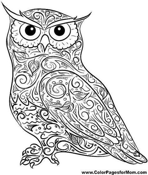 картинка сова черно-белая