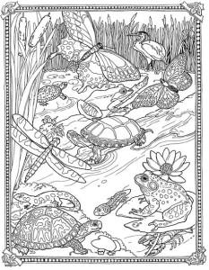 Раскраски антистресс животные черепахи