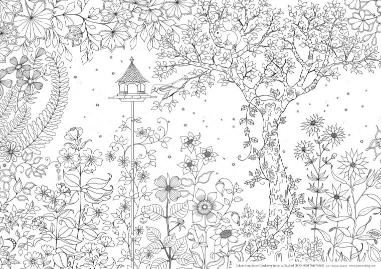 Таинственный сад раскраска купить