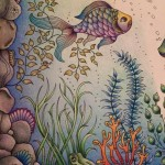 Раскрашенные раскраски рыбки