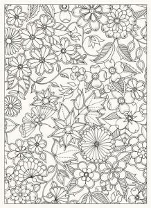 Картинки антистресс для раскрашивания - полевые цветы