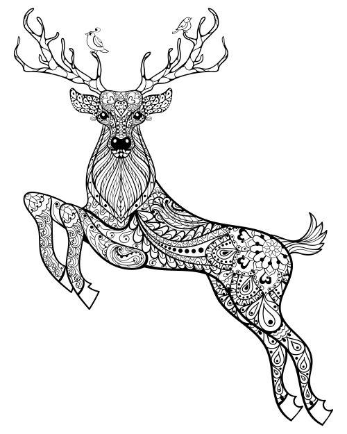 Взрослые раскраски олень