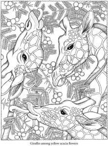раскраски антистресс жирафы
