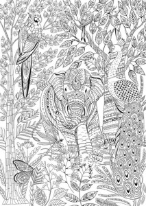 раскраска антистресс слон павлин попугай