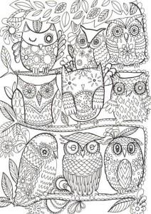 раскраска антистресс совы