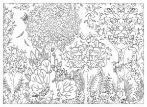 Антистресс раскраска Зачарованный лес