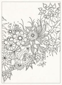 таинственный сад раскраска