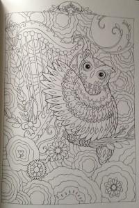Раскраски совы красивые