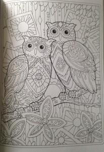 Раскраска сова распечатать