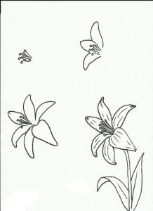 цветы поэтапно