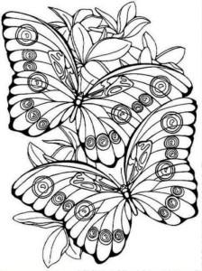раскраски антистресс бабочки