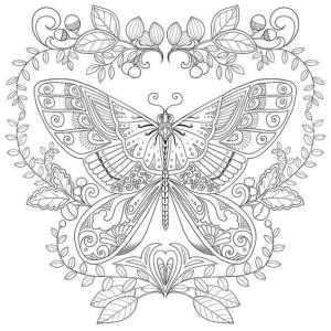скачать раскраску бабочка